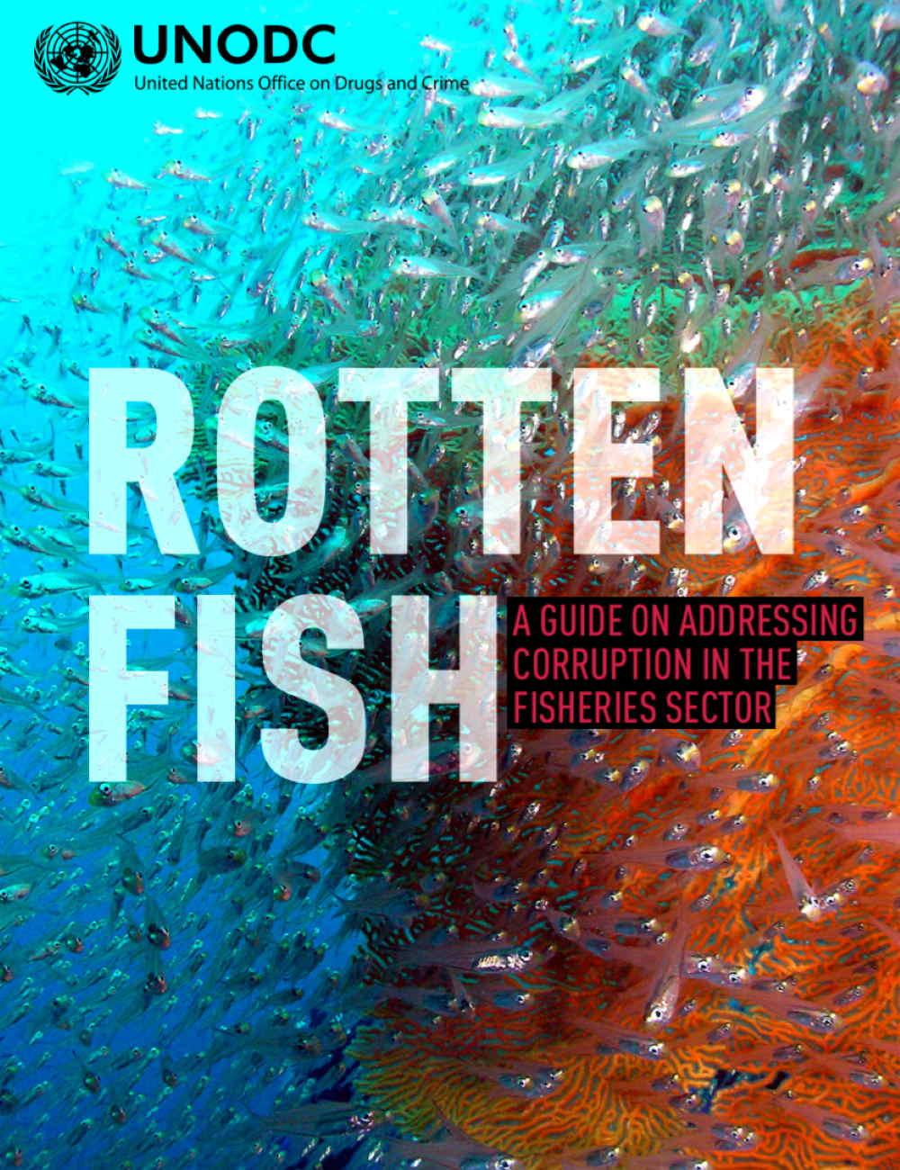 Rotten Fish